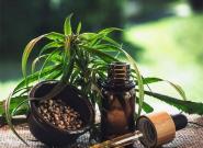 Cannabis gegen Tinnitus: Hilft medizinisches