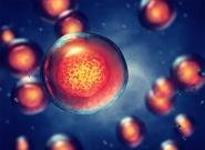 Chemotherapie und Schwerhörigkeit – Cisplatin